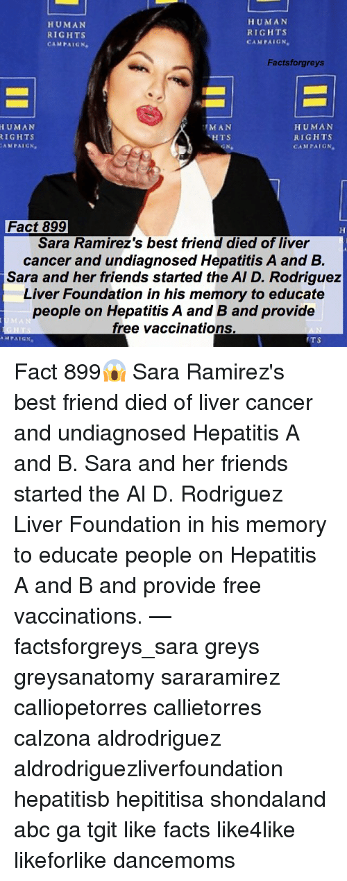 Hepatitis: HUMAN  RIGHTS  CAMPAIGN  HUMAN  RIGHTS  CAMPAIGN  Factsforgreys  HUMAN  IGHTS  AMPAICN  MAN  HTS  HUMAN  RIGHTS  CAMFAIGN  aN  Fact 899  Sara Ramirez's best friend died of liver  cancer and undiagnosed Hepatitis A and B.  Sara and her friends started the AI D. Rodriguez  Liver Foundation in his memory to educate  people on Hepatitis A and B and provide  free vaccinations.  TS Fact 899😱 Sara Ramirez's best friend died of liver cancer and undiagnosed Hepatitis A and B. Sara and her friends started the Al D. Rodriguez Liver Foundation in his memory to educate people on Hepatitis A and B and provide free vaccinations. — factsforgreys_sara greys greysanatomy sararamirez calliopetorres callietorres calzona aldrodriguez aldrodriguezliverfoundation hepatitisb hepititisa shondaland abc ga tgit like facts like4like likeforlike dancemoms
