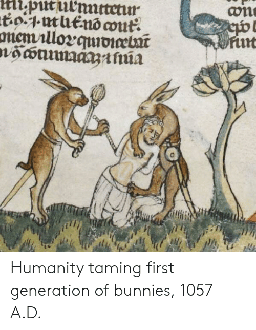 Bunnies, Humanity, and First: Humanity taming first generation of bunnies, 1057 A.D.
