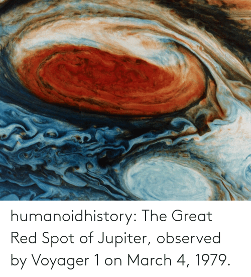 Jupiter: humanoidhistory:  The Great Red Spot of Jupiter, observed by Voyager 1 on March 4, 1979.