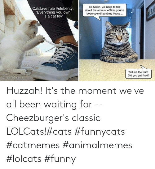 moment: Huzzah! It's the moment we've all been waiting for -- Cheezburger's classic LOLCats!#cats #funnycats #catmemes #animalmemes #lolcats #funny