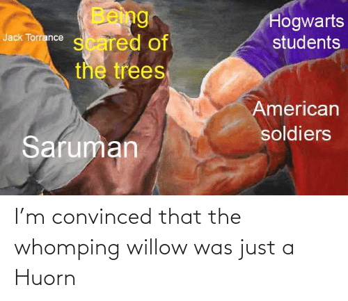 willow: I'm convinced that the whomping willow was just a Huorn