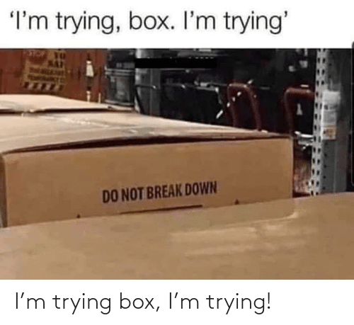 Trying: I'm trying box, I'm trying!