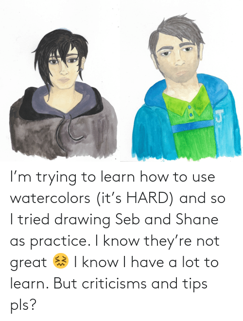 Shane: I'm trying to learn how to use watercolors (it's HARD) and so I tried drawing Seb and Shane as practice. I know they're not great 😖 I know I have a lot to learn. But criticisms and tips pls?