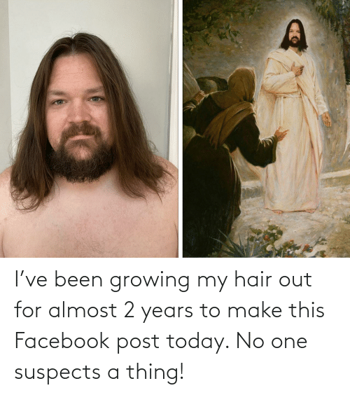 Hair: I've been growing my hair out for almost 2 years to make this Facebook post today. No one suspects a thing!