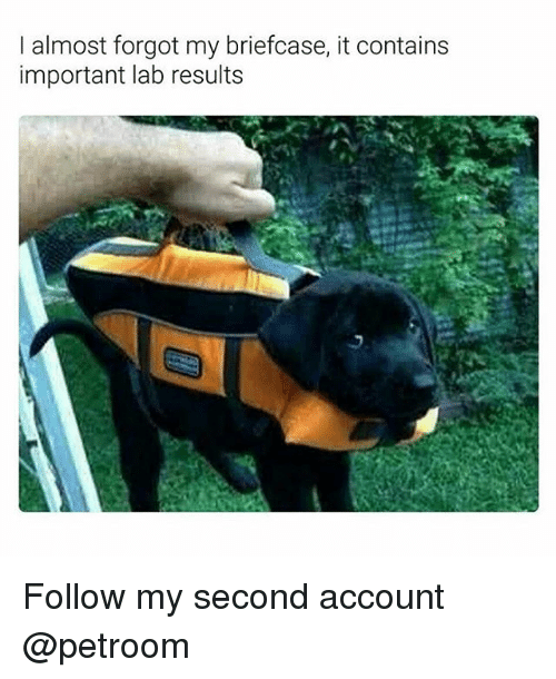 Funny, Account, and  Almost: I almost forgot my briefcase, it contains  important lab results Follow my second account @petroom