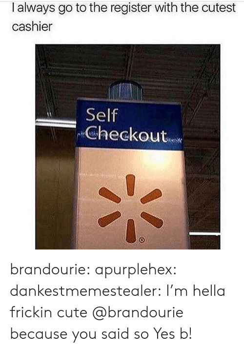 Cute, Tumblr, and Blog: I always go to the register with the cutest  cashier  Self  Checkout brandourie:  apurplehex:  dankestmemestealer:  I'm hella frickin cute  @brandourie because you said so  Yes b!