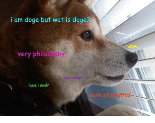 doges: i am doge but wat is doge?  wow  very philasophy  have i soul?  uch ex