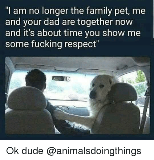 """Dad, Dude, and Family: """"I am no longer the family pet, me  and your dad are together now  and it's about time you show me  some fucking respect"""" Ok dude @animalsdoingthings"""