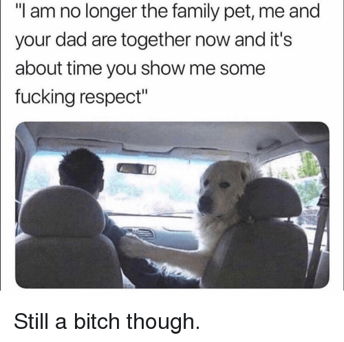 """Pet Me: """"I am no longer the family pet, me and  your dad are together now and it's   about time you show me some  fucking respect"""" Still a bitch though."""