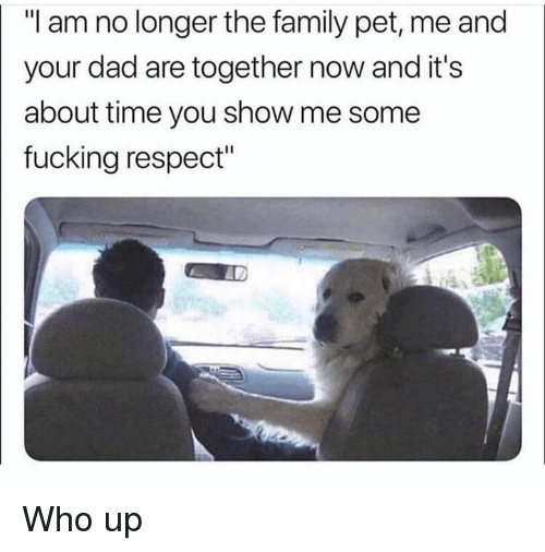 """Pet Me: """"I am no longer the family pet, me and  your dad are together now and it's  about time you show me some  fucking respect"""" Who up"""