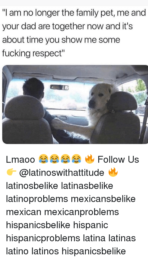 """Pet Me: """"I am no longer the family pet, me and  your dad are together now and it's  about time you show me some  fucking respect"""" Lmaoo 😂😂😂😂 🔥 Follow Us 👉 @latinoswithattitude 🔥 latinosbelike latinasbelike latinoproblems mexicansbelike mexican mexicanproblems hispanicsbelike hispanic hispanicproblems latina latinas latino latinos hispanicsbelike"""