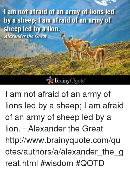 Alexander the Great: I am not afraid of an army of lions led  by a sheepi lam afraid of an army of  sheep led by a lion  Alexander the Great  Brainy  Quote I am not afraid of an army of lions led by a sheep; I am afraid of an army of sheep led by a lion. - Alexander the Great http://www.brainyquote.com/quotes/authors/a/alexander_the_great.html #wisdom #QOTD