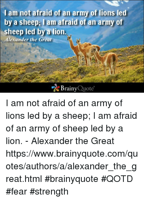 Alexander the Great: I am not afraid of an army of lions led  by a sheepi lam afraid of an army of  sheep led by a lion  Alexander the Great  Brainy  Quote I am not afraid of an army of lions led by a sheep; I am afraid of an army of sheep led by a lion. - Alexander the Great  https://www.brainyquote.com/quotes/authors/a/alexander_the_great.html #brainyquote #QOTD #fear #strength