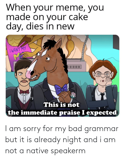 grammar: I am sorry for my bad grammar but it is already night and i am not a native speakerm