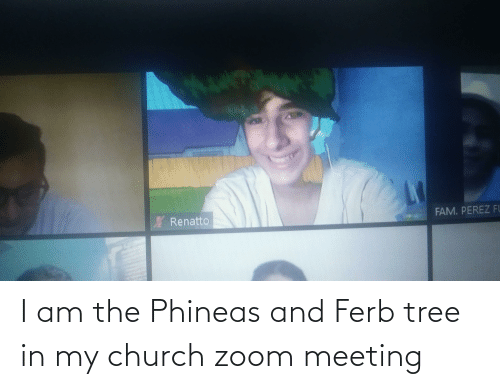 meeting: I am the Phineas and Ferb tree in my church zoom meeting
