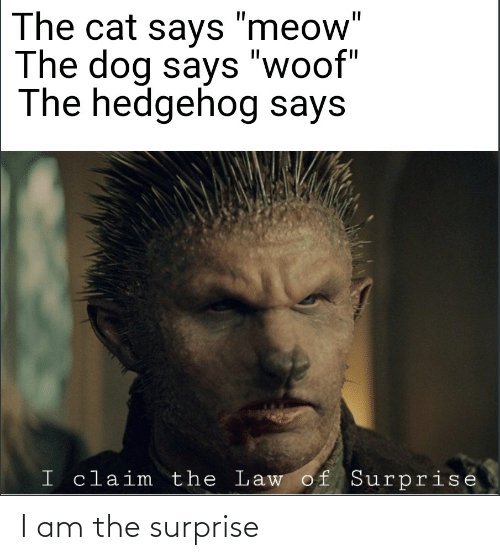 I Am The: I am the surprise