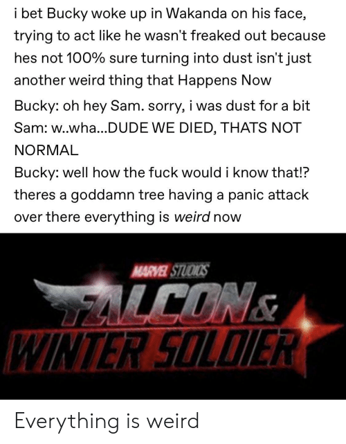 Dude, I Bet, and Marvel Comics: i bet Bucky woke up in Wakanda on his face,  trying to act like he wasn't freaked out because  hes not 100% sure turning into dust isn't just  another weird thing that Happens Now  Bucky: oh hey Sam. sorry, i was dust for a bit  Sam: w..wha...DUDE WE DIED, THATS NOT  NORMAL  Bucky: well how the fuck would i know that!?  theres a goddamn tree having a panic attack  over there everything is weird now  MARVEL STUOIOS  LCONS  WINTER SOLDIER Everything is weird