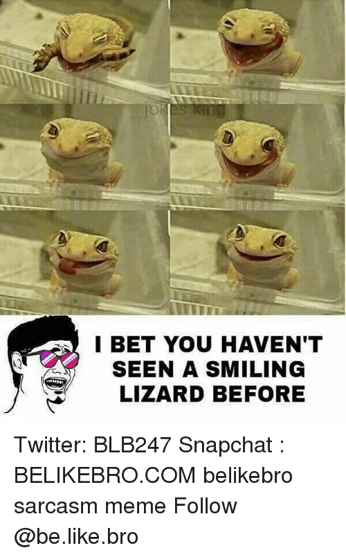 Be Like, I Bet, and Meme: I BET YOU HAVEN'T  SEEN A SMILING  LIZARD BEFORE Twitter: BLB247 Snapchat : BELIKEBRO.COM belikebro sarcasm meme Follow @be.like.bro