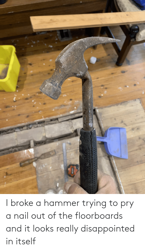 broke: I broke a hammer trying to pry a nail out of the floorboards and it looks really disappointed in itself