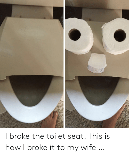 Wife, How, and Seat: I broke the toilet seat. This is how I broke it to my wife …