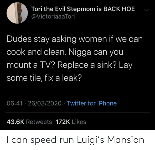 can: I can speed run Luigi's Mansion