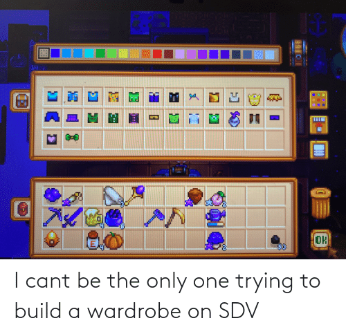 build a: I cant be the only one trying to build a wardrobe on SDV
