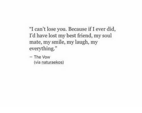 "The Vow: ""I can't lose you. Because if I ever did,  I'd have lost my best friend, my soul  mate, my smile, my laugh, my  everything  - The Vow  (via naturaekos)"