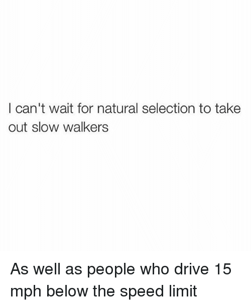 Memes, Drive, and 🤖: I can't wait for natural selection to take  out slow walkers As well as people who drive 15 mph below the speed limit