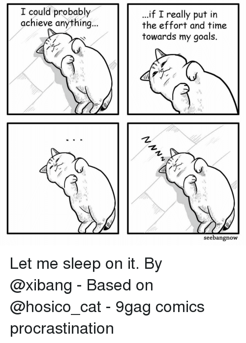 "9gag, Goals, and Memes: I could probably  achieve anything  ..if I really put in  the effort and time  towards my goals.  1,  ""护  seebangnow Let me sleep on it.⠀ By @xibang⠀ -⠀ Based on @hosico_cat⠀ -⠀ 9gag comics procrastination"
