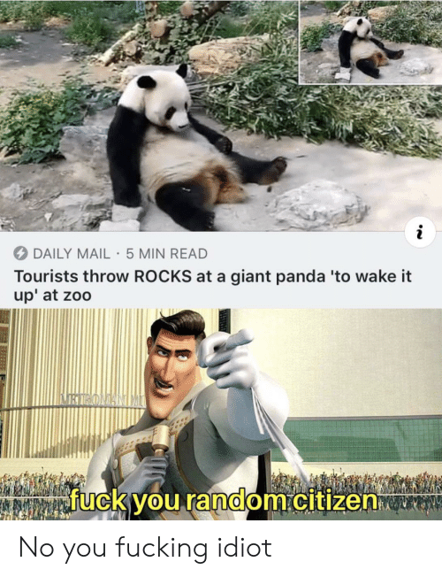 Fuck You, Fucking, and Panda: i  DAILY MAIL 5 MIN READ  Tourists throw ROCKS at a giant panda 'to wake it  up' at zoo  fuck you random.citizen No you fucking idiot