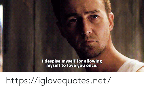 Despise: I despise myself for allowing  myself to love you once. https://iglovequotes.net/
