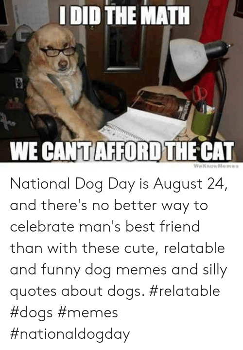 I DID THE MATH WE CANTAFFORD THE CAT WeKsowMemes National
