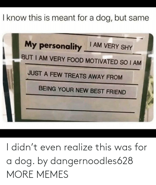 A Dog: I didn't even realize this was for a dog. by dangernoodles628 MORE MEMES