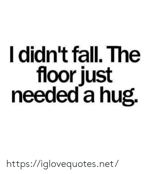 Fall, Net, and Hug: I didn't fall. The  floor just  needed a hug. https://iglovequotes.net/