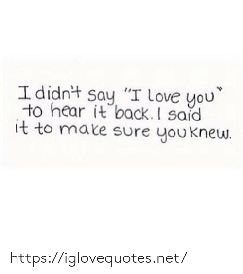 "Said It: I didnt say ""I love you  to hear it back.I said  it to mate sure youknew https://iglovequotes.net/"