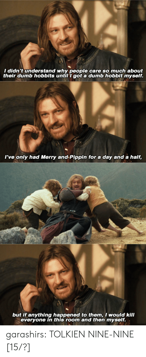 Pippin: I didn't understand why people care so much about  their dumb hobbits untill got a dumb hobbit myself.   I've only had Merry and Pippin for a day and a half,   but if anything happened to them,I would kill  everyone in this room and then myself. . garashirs: TOLKIEN NINE-NINE [15/?]