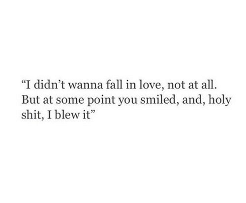"""Point You: """"I didn't wanna fall in love, not at all  But at some point you smiled, and, holy  shit, I blew it"""