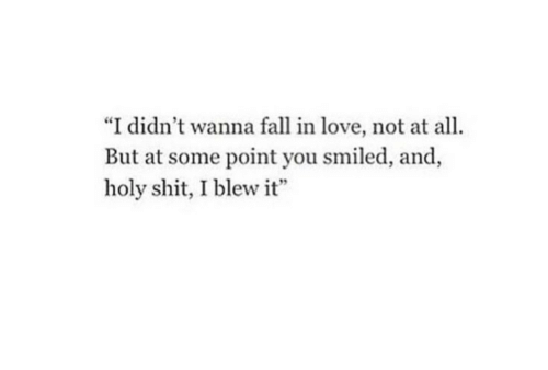 """Point You: """"I didn't wanna fall in love, not at all.  But at some point you smiled, and,  holy shit, I blew it"""""""