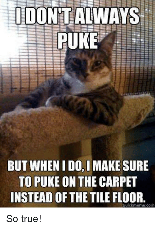 Memes, 🤖, and Carpet: I DON ALWAYS  PUKE  BUT WHEN I DO, IMAKESURE  TO PUKE ON THE CARPET  INSTEAD OF THE TILE FLOOR.  quick meme com So true!
