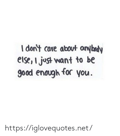 Good, Net, and You: I don't care about anybody  else, I just want to be  good enough for you. https://iglovequotes.net/