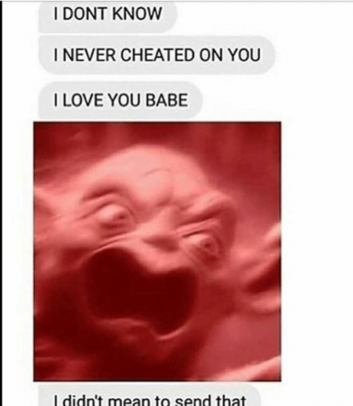 Mean, Dank Memes, and Never: I DONT KNOW  I NEVER CHEATED ON YOU  ILOVE YOU BABE  l didn't mean to send that