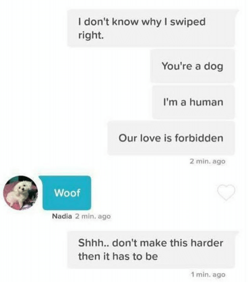 Dank, Love, and 🤖: I don't know why I swiped  right.  You're a dog  I'm a human  Our love is forbidden  2 min. ago  Woof  Nadia 2 min. ago  Shhh.. don't make this harder  then it has to be  1 min. ago