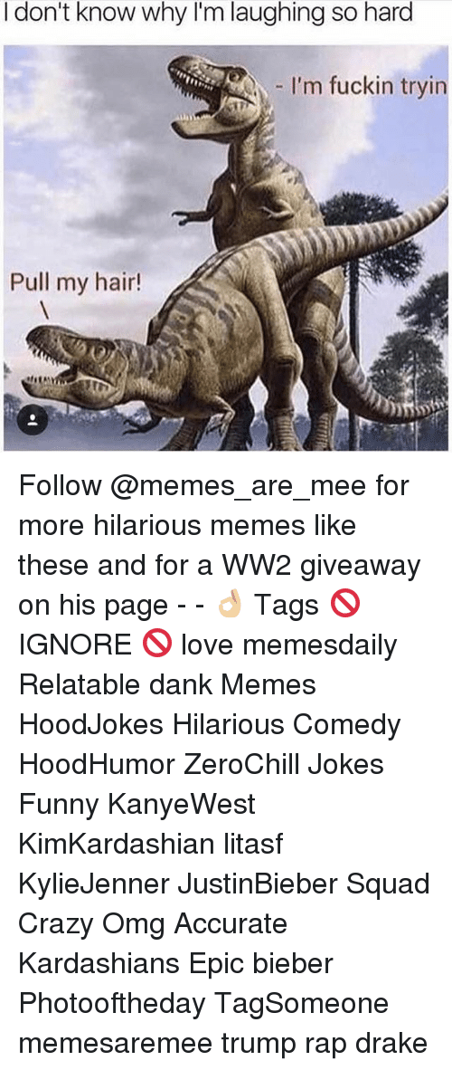 Crazy, Dank, and Drake: I don't know why I'm laughing so hard  I'm fuckin tryin  Pull my hair! Follow @memes_are_mee for more hilarious memes like these and for a WW2 giveaway on his page - - 👌🏼 Tags 🚫 IGNORE 🚫 love memesdaily Relatable dank Memes HoodJokes Hilarious Comedy HoodHumor ZeroChill Jokes Funny KanyeWest KimKardashian litasf KylieJenner JustinBieber Squad Crazy Omg Accurate Kardashians Epic bieber Photooftheday TagSomeone memesaremee trump rap drake