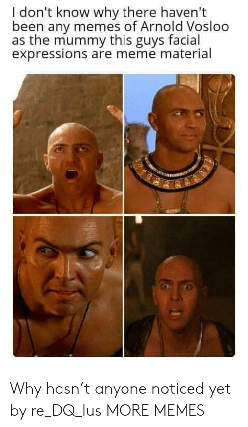 lus: I don't know why there haven't  been any memes of Arnold Vosloo  as the mummy this guys facial  expressions are meme material Why hasn't anyone noticed yet by re_DQ_lus MORE MEMES
