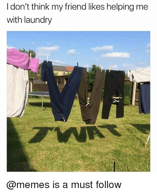 Funny, Laundry, and Meme: I don't think my friend likes helping me  with laundry @memes is a must follow