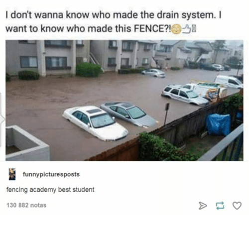 fencing: I don't wanna know who made the drain system. I  want to know who made this FENCE?!  funnypicturesposts  fencing academy best student  30 882 notas