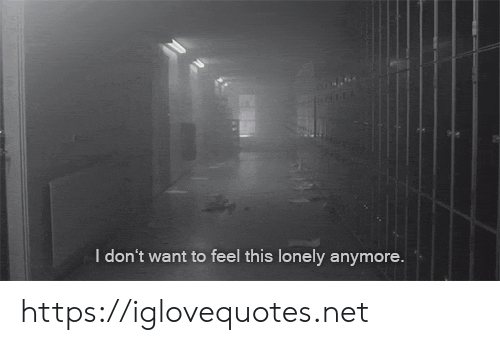 Net, Href, and This: I don't want to feel this lonely anymore. https://iglovequotes.net