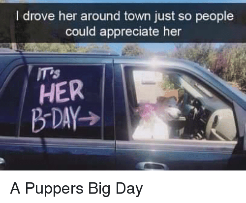 Appreciate, Her, and Big: I drove her around town just so people  could appreciate her  ITs  HER A Puppers Big Day