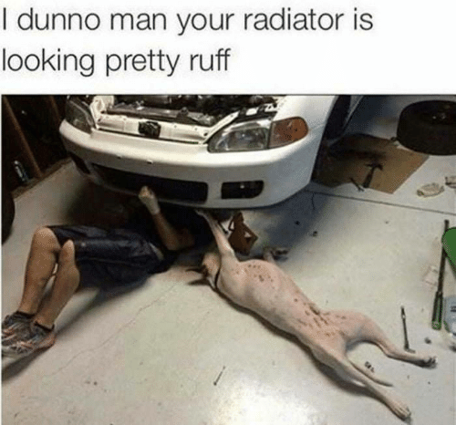 Looking, Man, and I Dunno: I dunno man your radiator is  looking pretty ruff