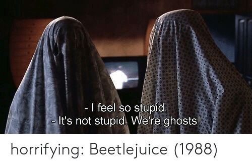 Beetlejuice: I feel so stupid  It's not stupid We're ghosts! horrifying: Beetlejuice (1988)